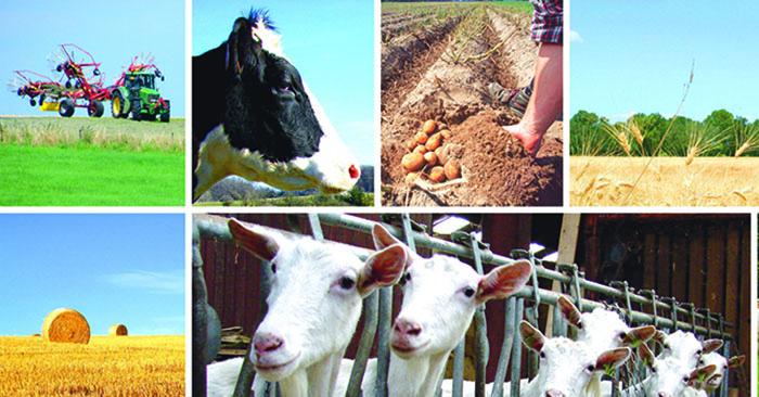 Landwirtschaft und Umweltpolitik: ein aufschlußreicher Austausch zwischen Landwirtschaftsministerium und Mouvement Ecologique