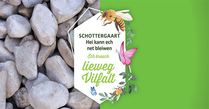 "Campagne ""NEE ZUM SCHOTTERGAART! Lieweg Vilfalt amplaz gro Wüst!"""