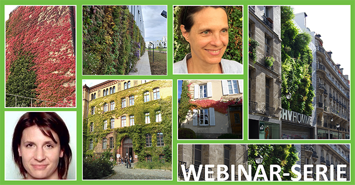 Grüne Fassaden – auf dem Weg zu einer ökologischeren Architektur