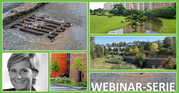 Séminaire en ligne 4 : La gestion des eaux pluviales par et pour la végétalisation des villes et villages