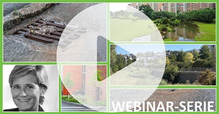 Vidéo et rapport du 4e séminaire- LA GESTION DES EAUX PLUVIALES par et pour la végétalisation des villes et villages